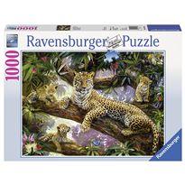 Puzzle 1000 leopardo - 26919148