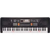 Organo 61 teclas con micro y toma usb - 31008922
