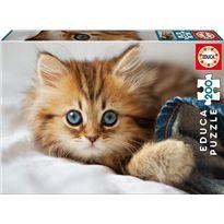 Puzzle 200 gatito - 04017154