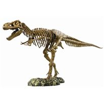 Tiranosaurus rex animal planet - 87400026